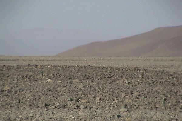 砂漠 ゴビ