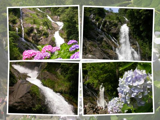佐賀・相知の「見帰りの滝」と紫陽花