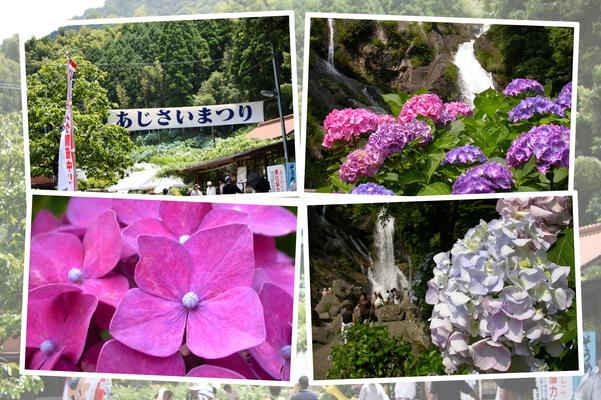 佐賀・相知の「見帰りの滝」と紫陽花祭り
