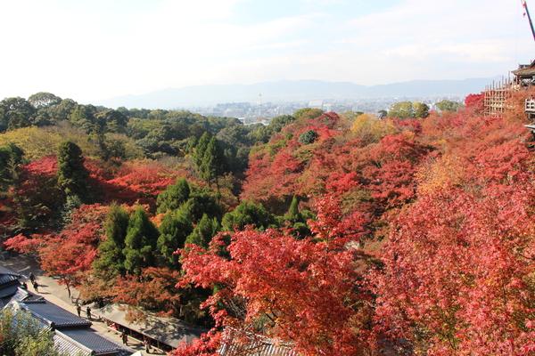 秋の京都・清水寺