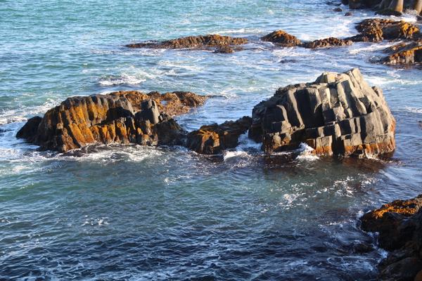 柱状節理の岩礁