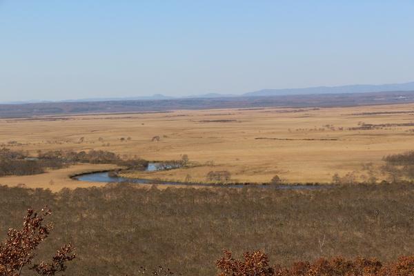 釧路湿原の秋